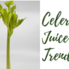 What You Need To Know About Celery Juice Trend