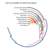 The Top 50 causes of Death in India